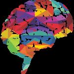 brain01_med